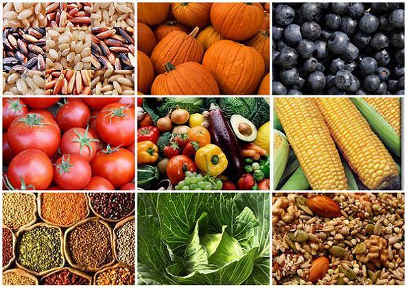 Pallavolo e Nutrienti, i Carboidrati 2° parte