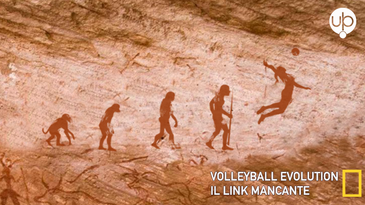 Volleyball Evolution, il Link mancante